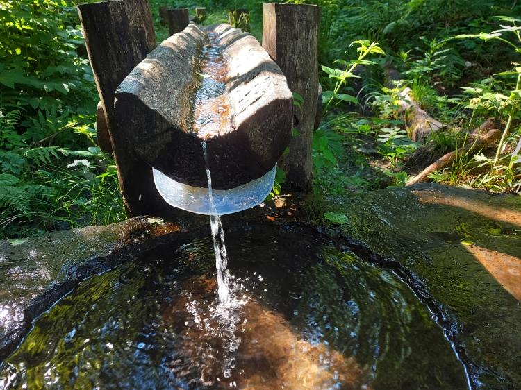 Die Siegquelle mit Trinkwasserqualität