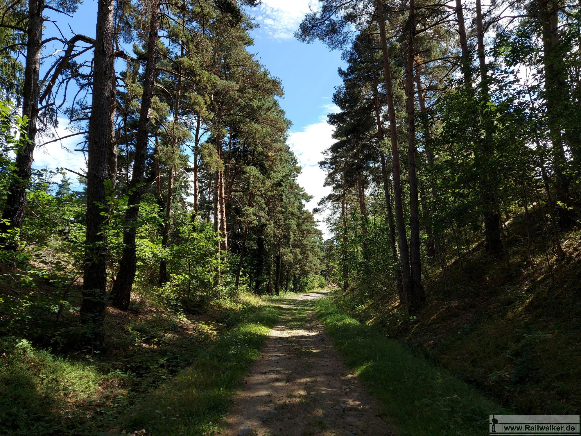 Die fertiggestellte Trasse der nie eröffneten strecke ist heute ein angenehmer Wanderweg, der überwiegend durch den Wald führt.