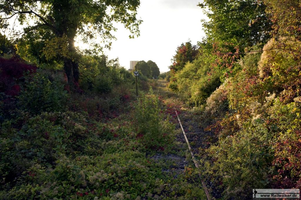 Kurz vor der Bahnhofsgrenze in Villeneuve-l'Archevêque