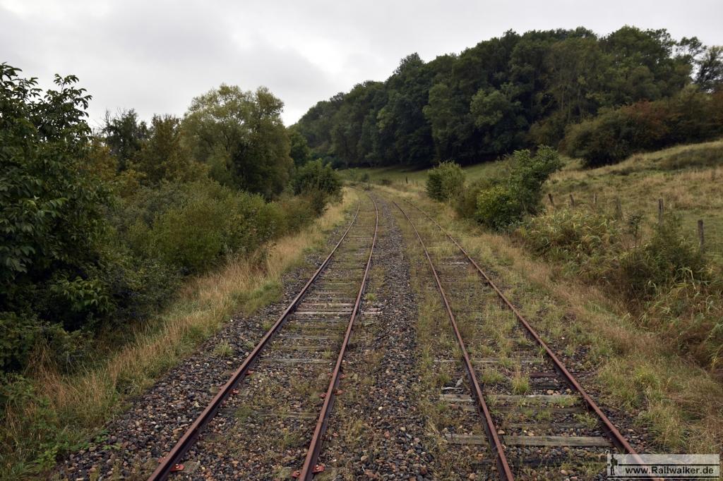 Ausblick auf die zweigleisige Strecke, die hier langsam unter dem Gras verschwindet.