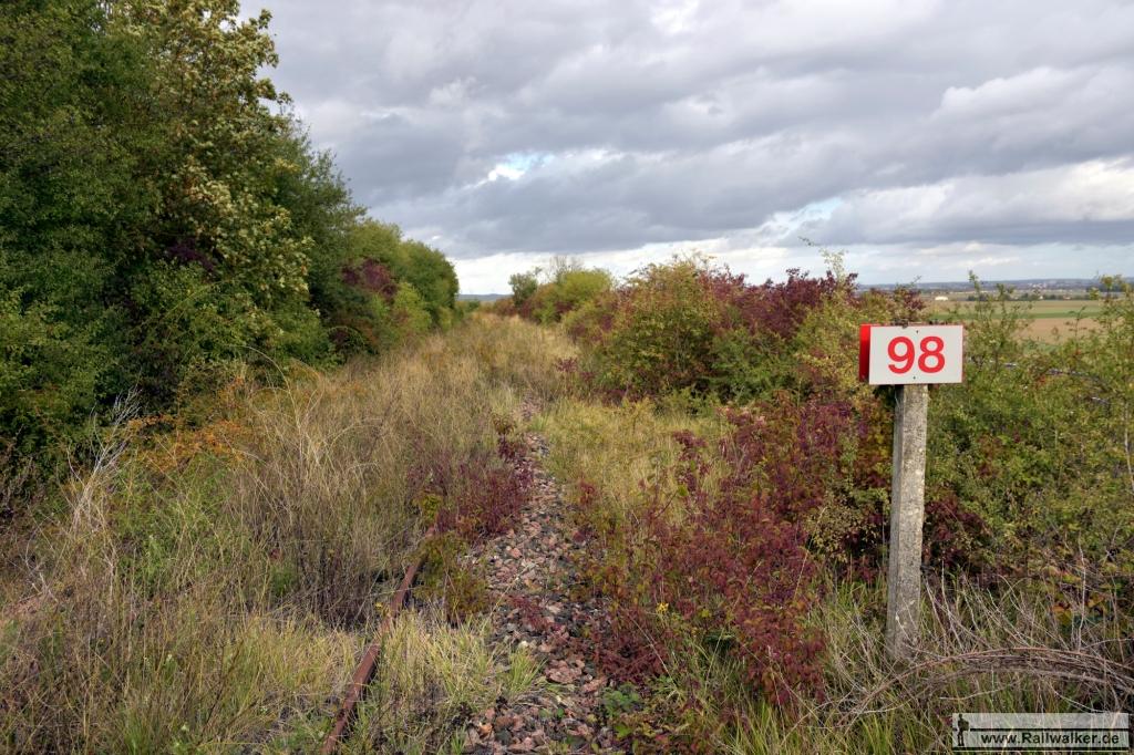 Streckenkilometer 98. Das Gleisbett ist bereits stark verkrautet.